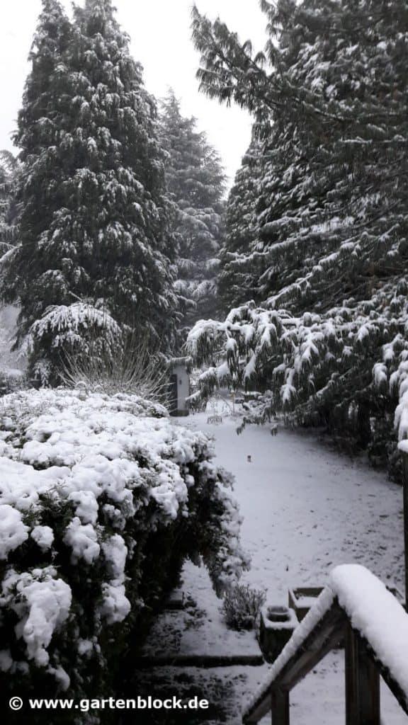 Kleine Winterimpression